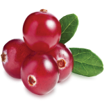 Collection Scent - Cranberries
